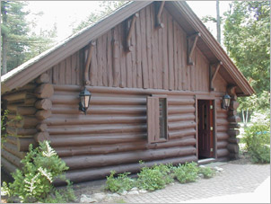 log home with dark stain